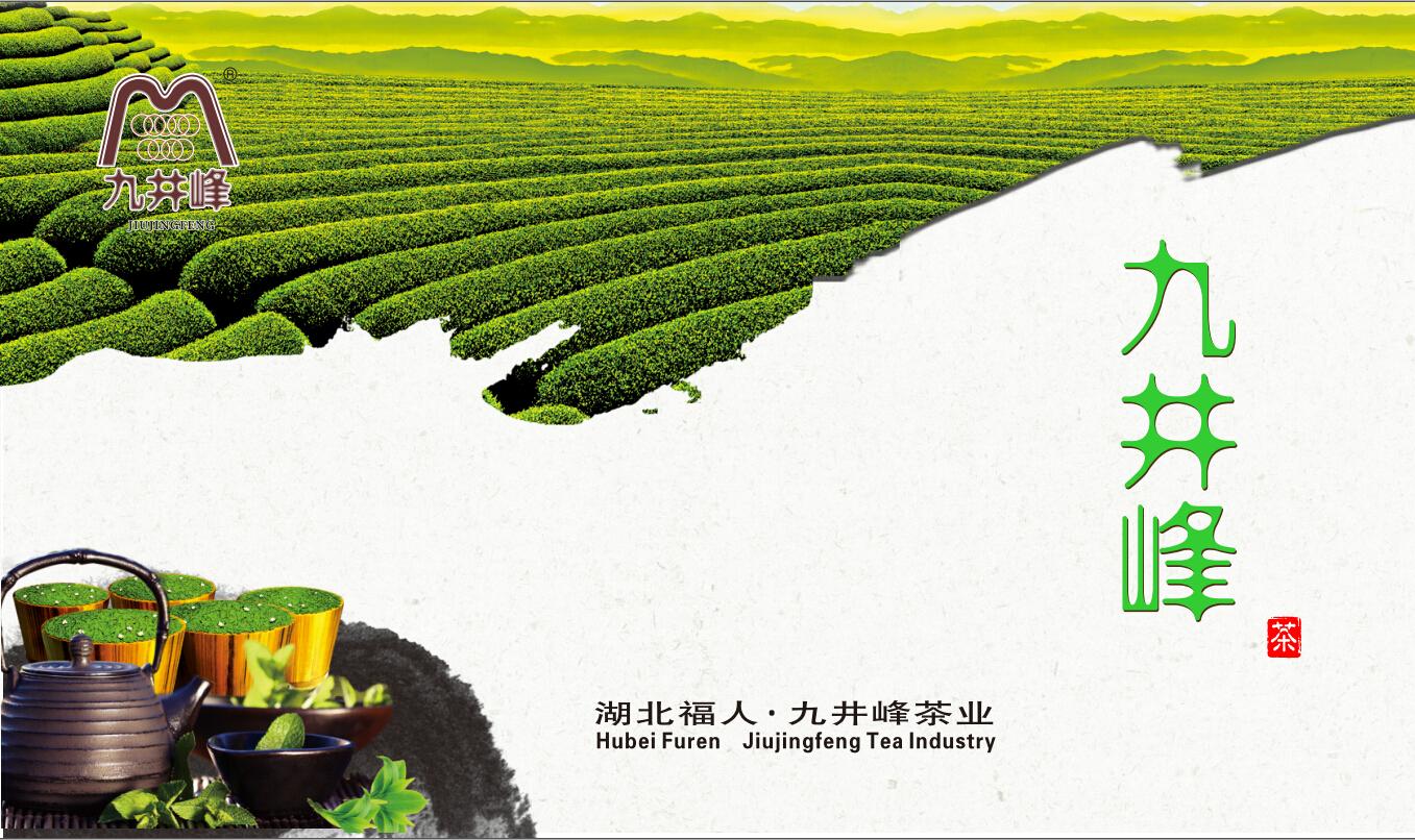 九井峰宣传册